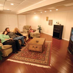 A family TV room in a Lockport basement